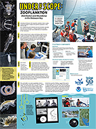 Under the Scope: Zooplankton Sea Grant Week Poster 2016